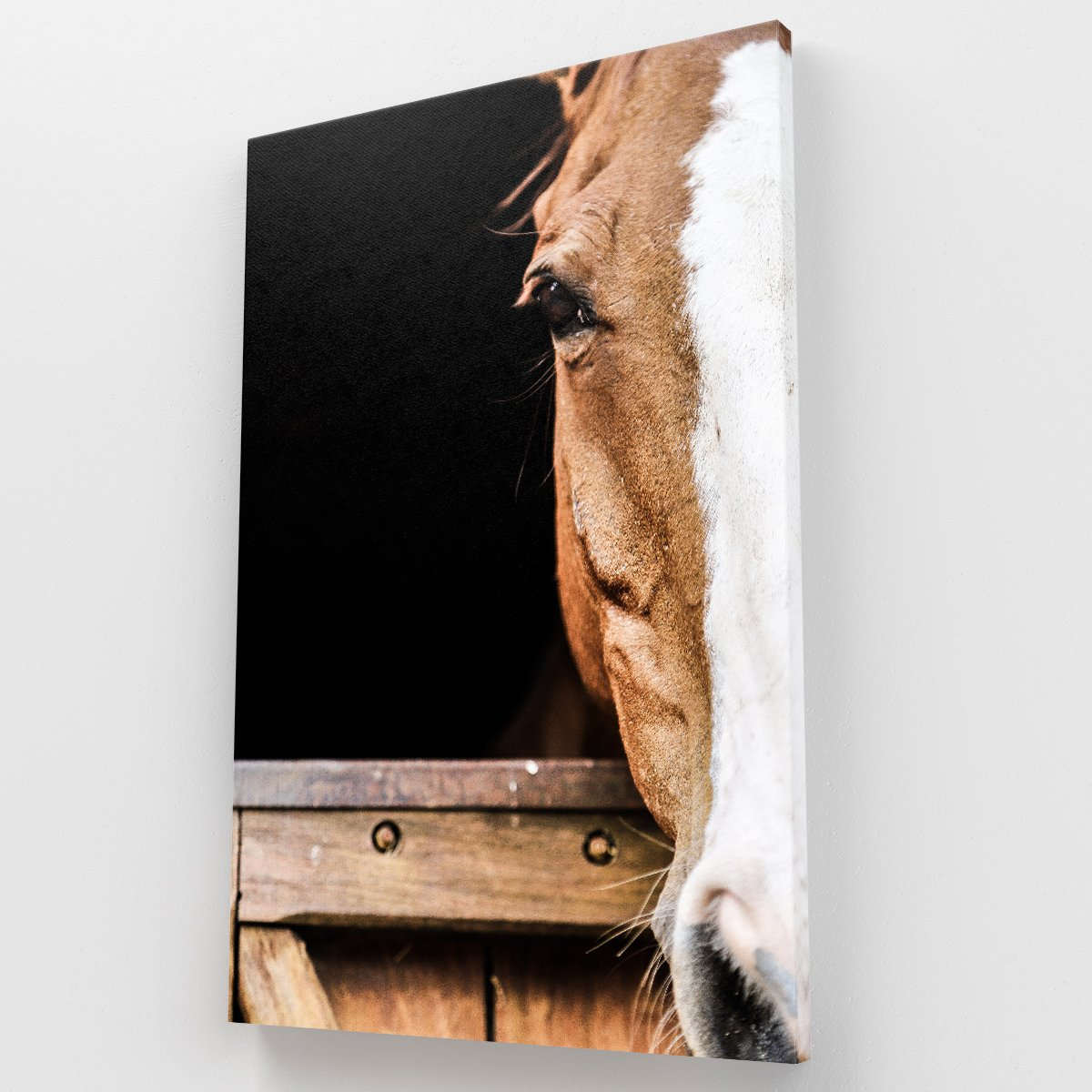 Caballo Canvas Krea Canvas - Cuadros Decorativos Para Salas