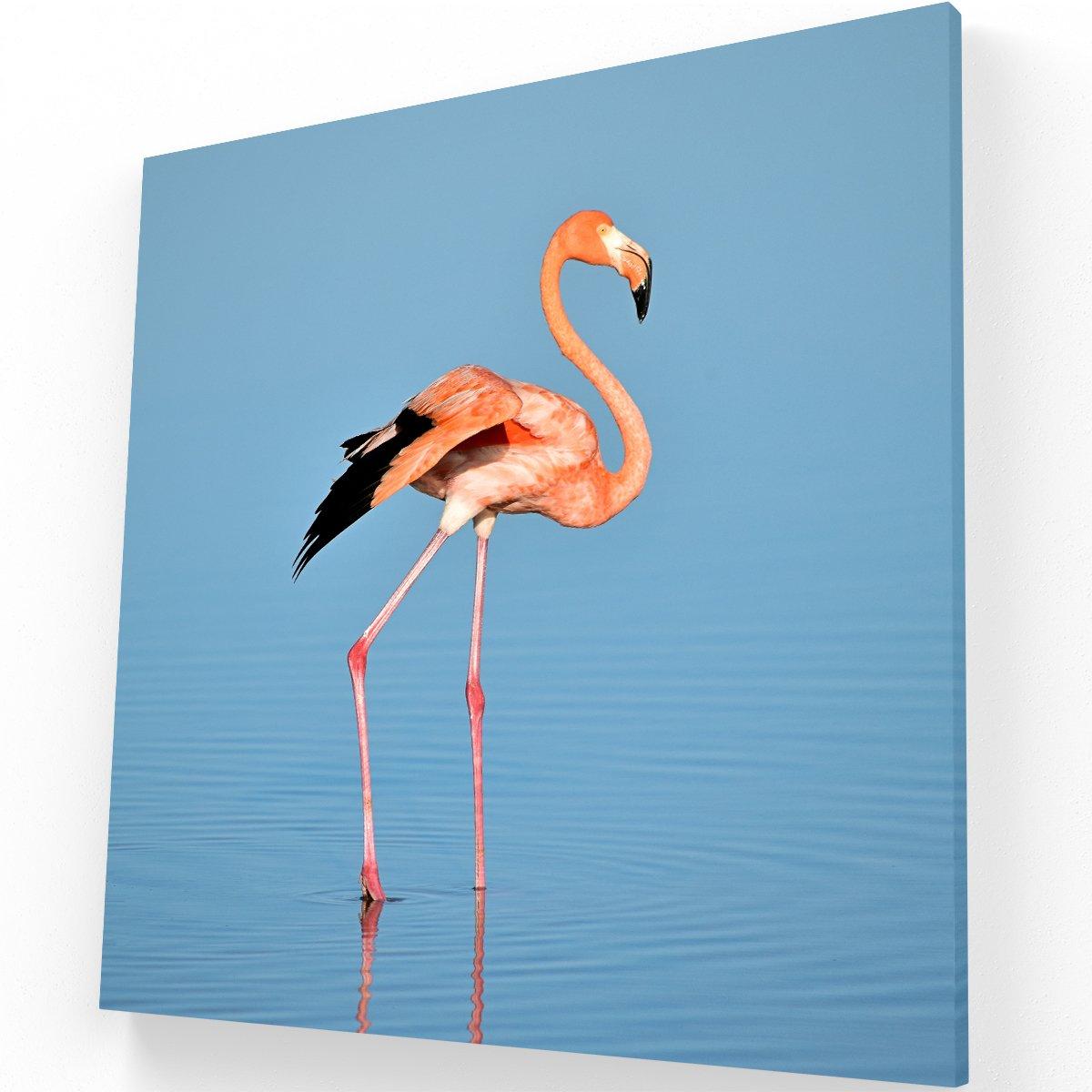 Flamingo CANVAS C 1 Krea Canvas - Cuadros Decorativos Para Salas