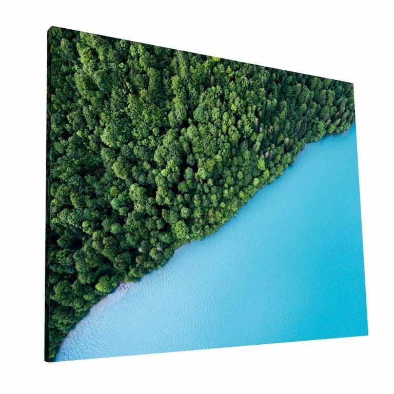 Forest Shore Canvas 1 Krea Canvas - Cuadros Decorativos Para Salas