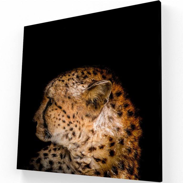 Leopardo Canvas C Krea Canvas - Cuadros Decorativos Para Salas