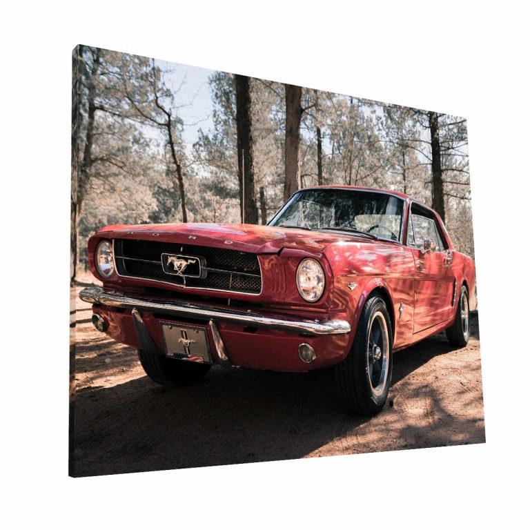 Mustang Canvas H Krea Canvas - Cuadros Decorativos Para Salas