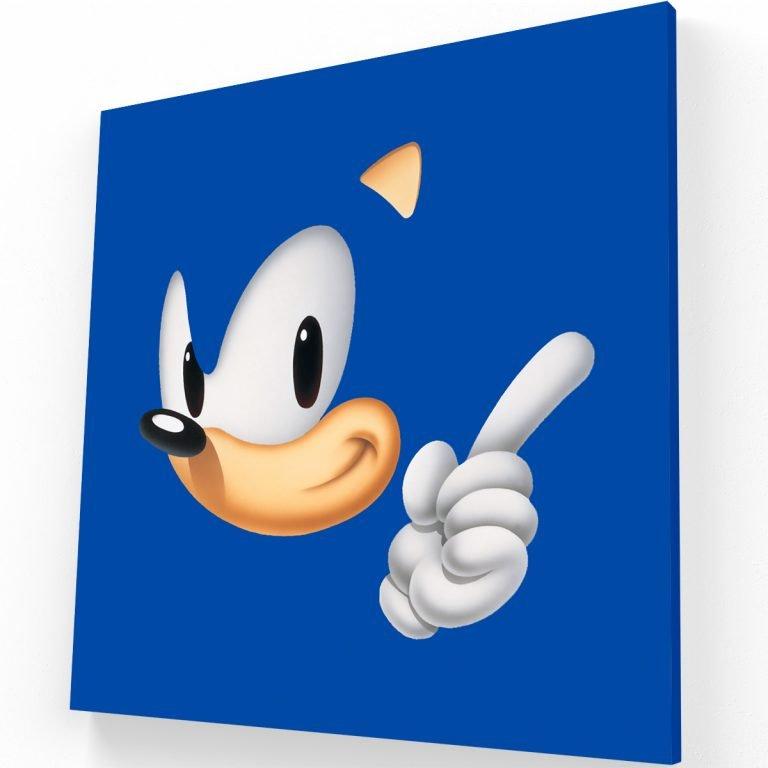 Sonic Canvas C Krea Canvas - Cuadros Decorativos Para Salas