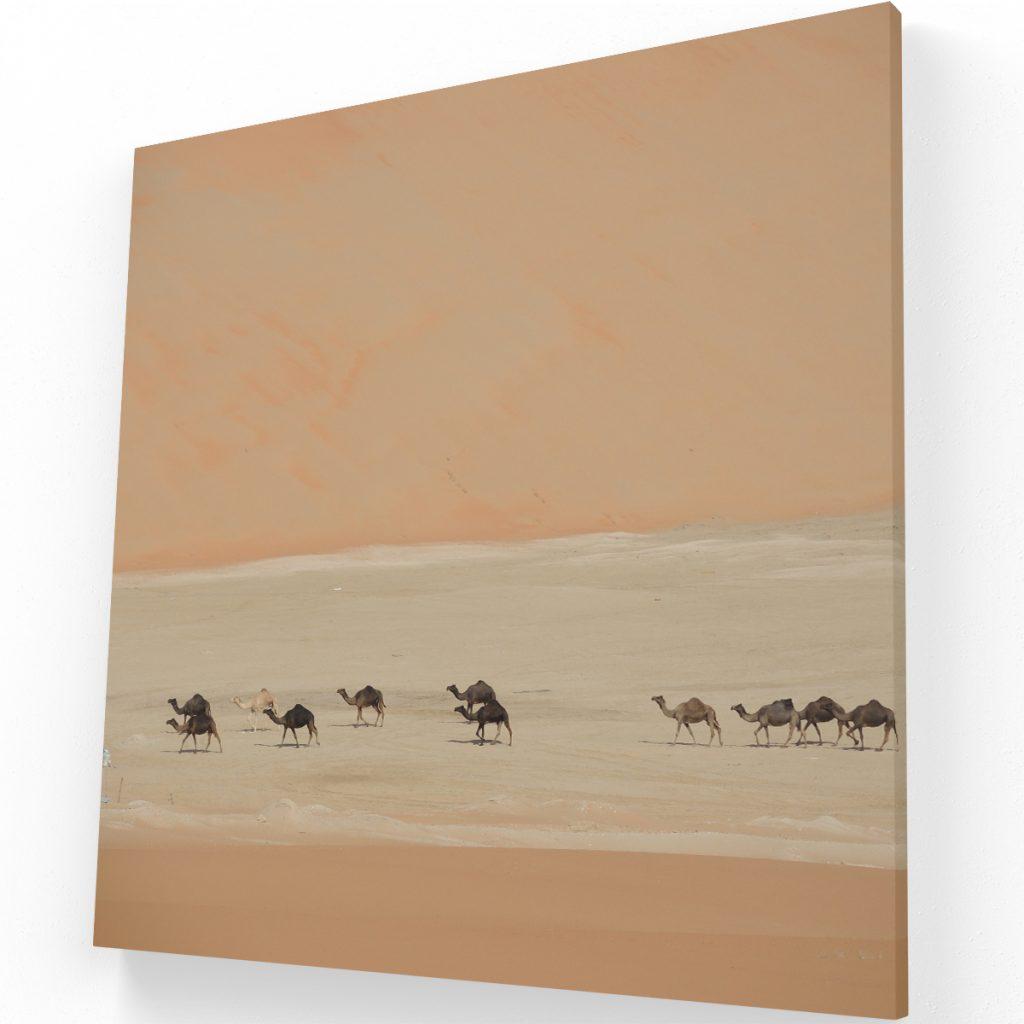 Canvas elegantes para salas