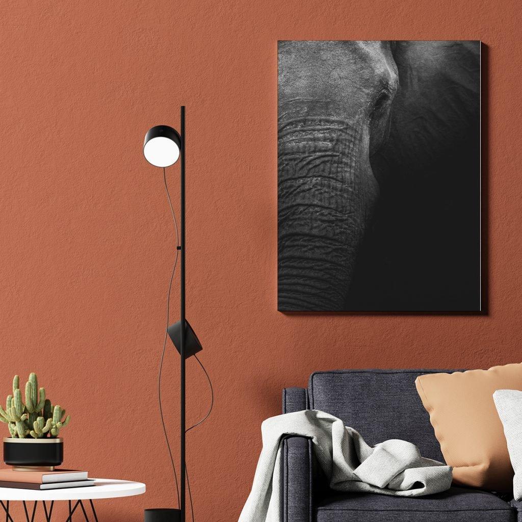 Cuadros Decorativos de Elefantes