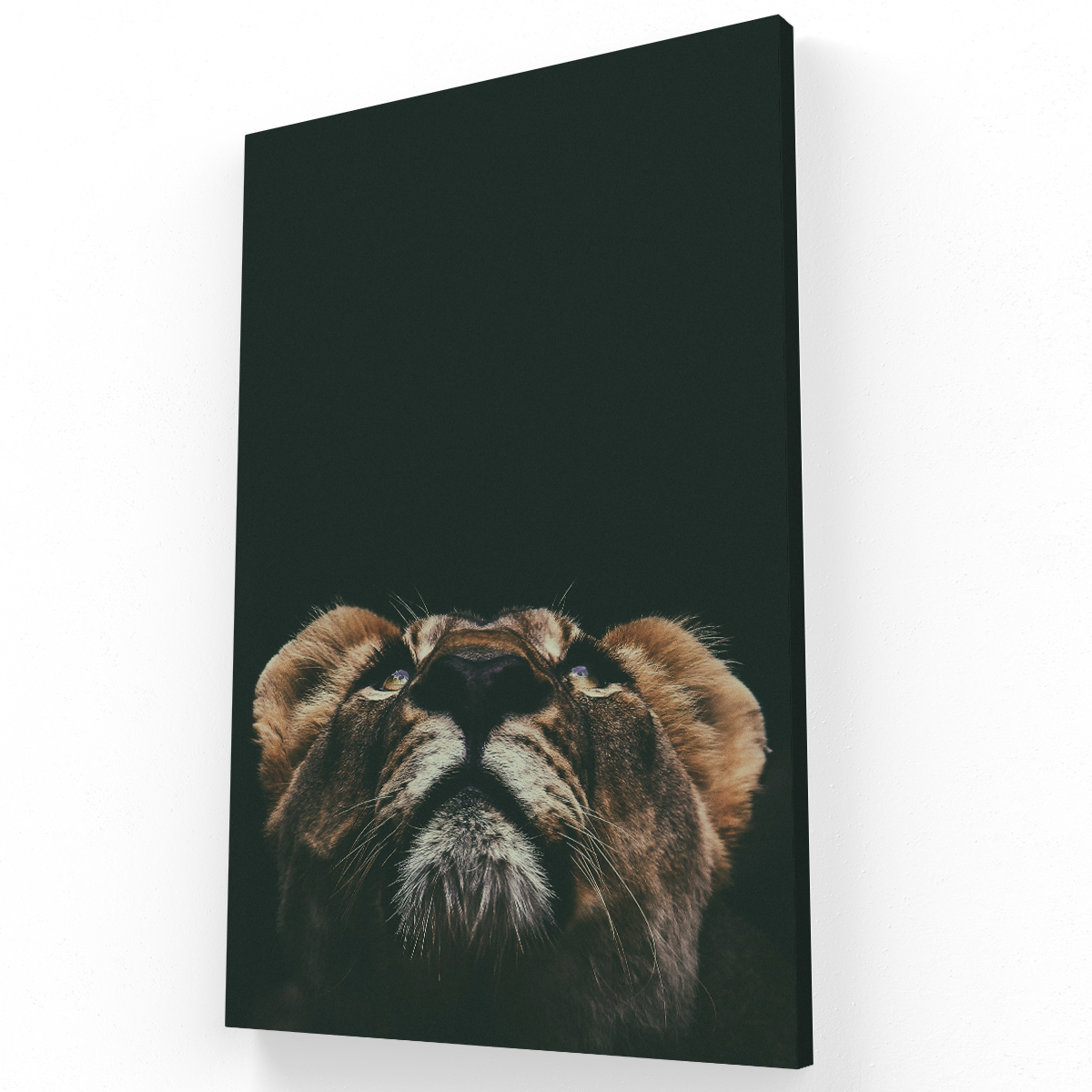 Leon Canvas Krea Canvas - Cuadros Decorativos Para Salas