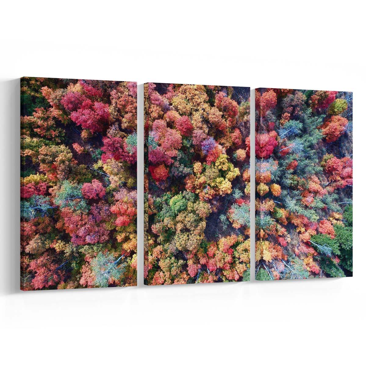 Canvas para salas méxico