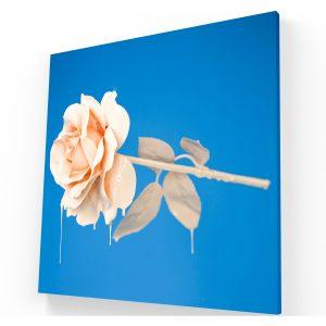 Canvas Ecatepec - Impresión de Canvas Ecatepec