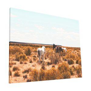 caballos canvas Krea Canvas - Cuadros Decorativos Para Salas