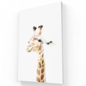 jirafa canvas Krea Canvas - Cuadros Decorativos Para Salas