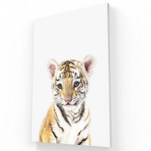 tigre canvas Krea Canvas - Cuadros Decorativos Para Salas